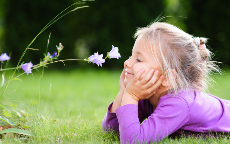 Little Blonde Girl Lying on Grass Looking at Wildflower on Sunny Day