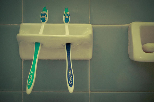 Two toothbrushes in their toothbrush holder