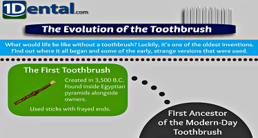 Evolution of the Toothbrush Infographic Preview