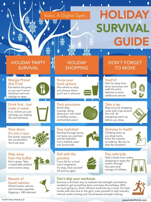 Holiday Survival Guide Infographic
